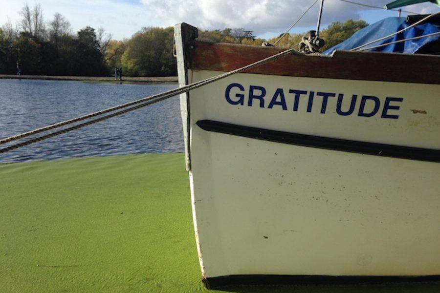 Terminer l'année sous le signe de la gratitude